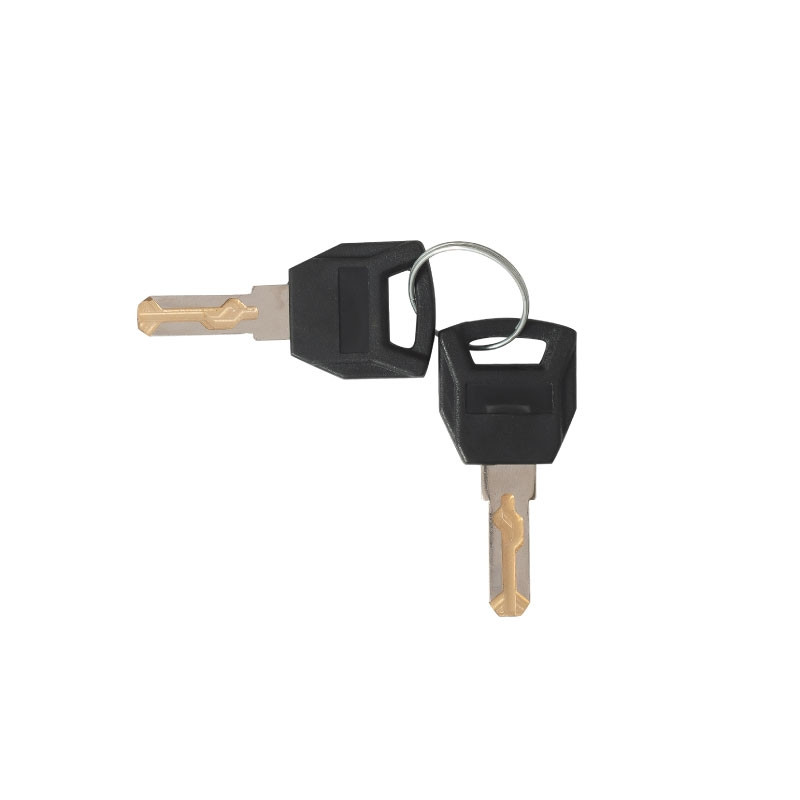 Valet Podium Extra key set of 2